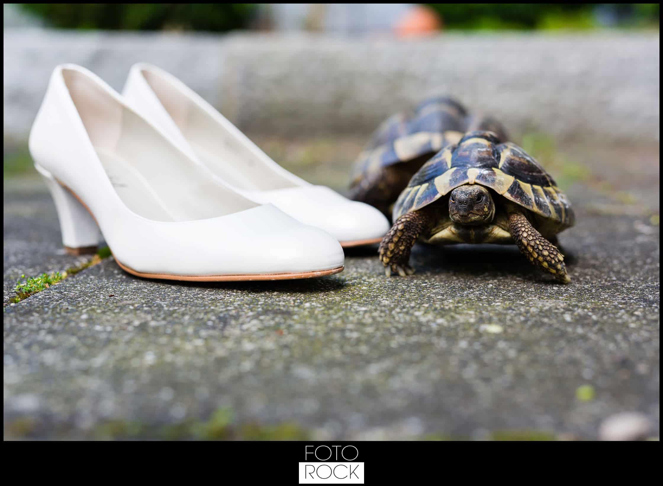 Hochzeit Elzach schuhe schildkröten