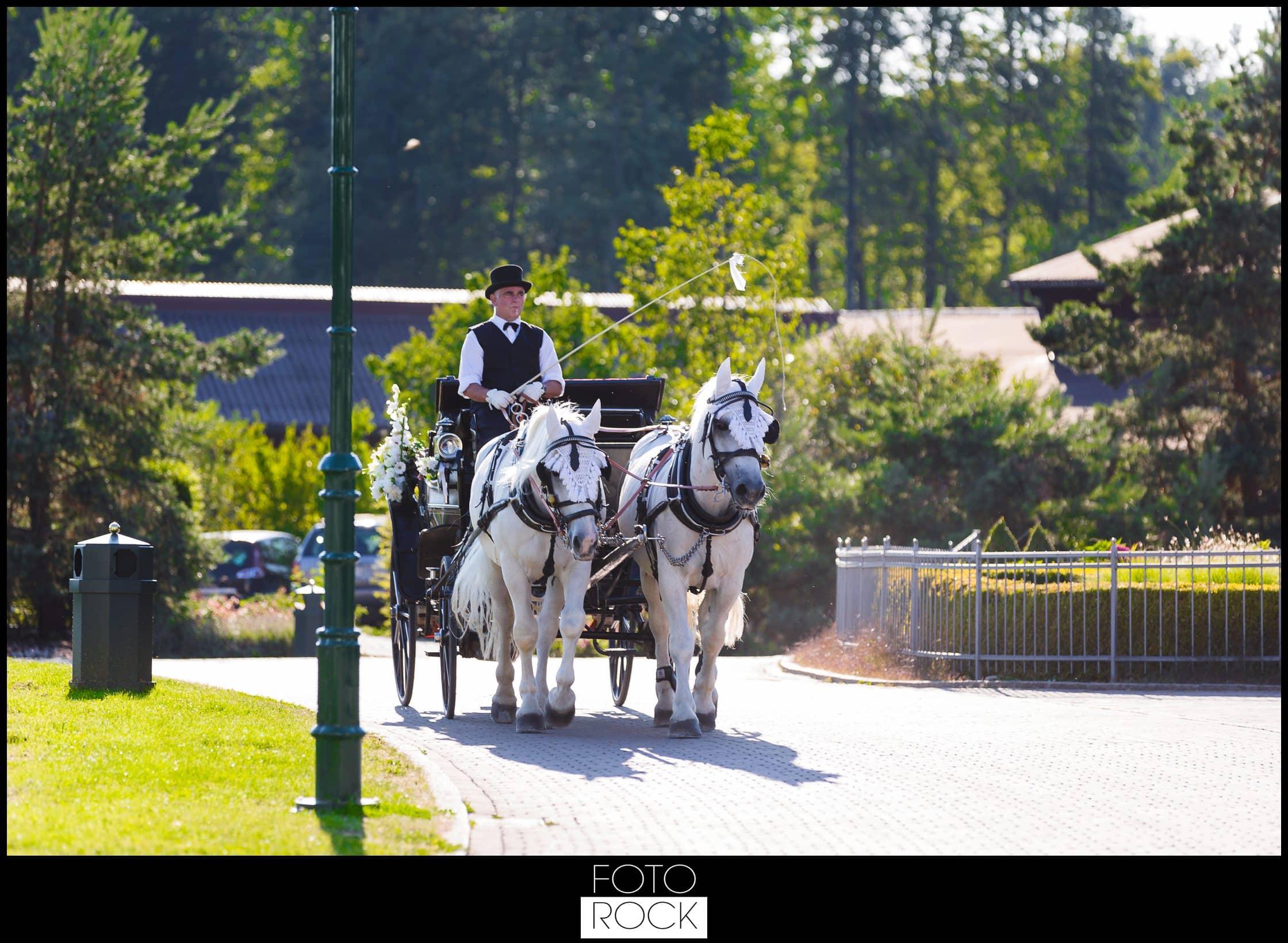 Hochzeit Rafz Albführen Pferde Kutsche