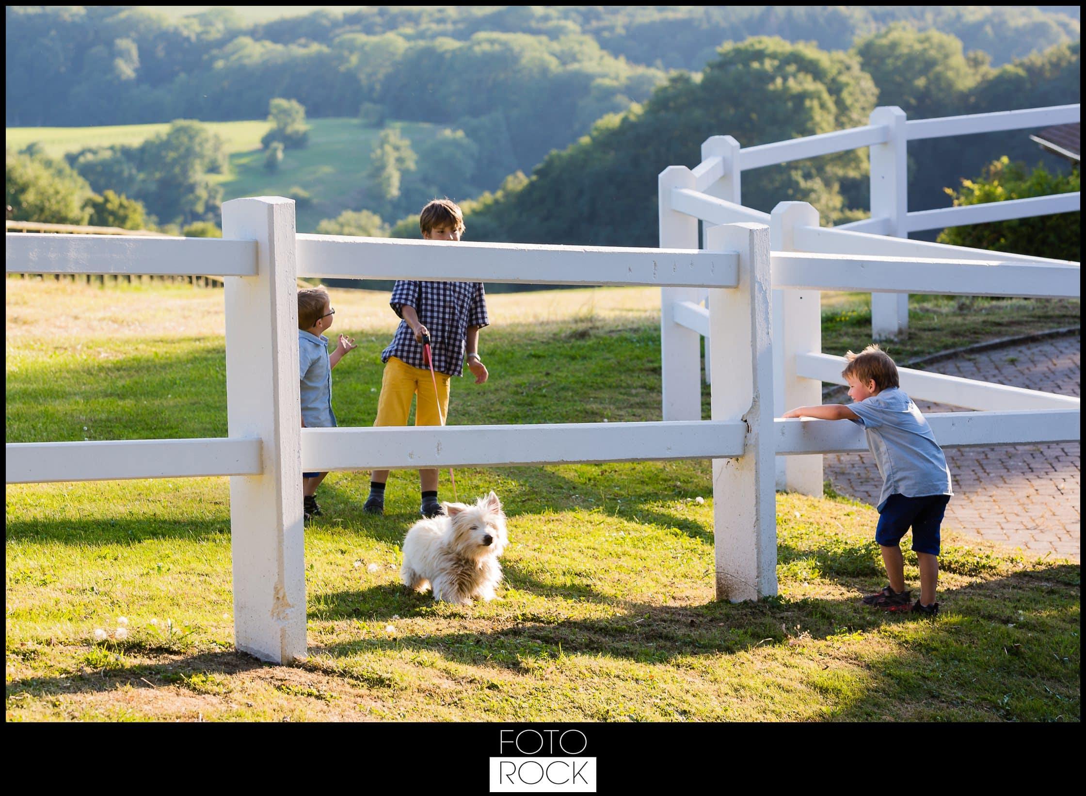 Hochzeit Rafz Albführen Kinder Hund Landschaft Zaun