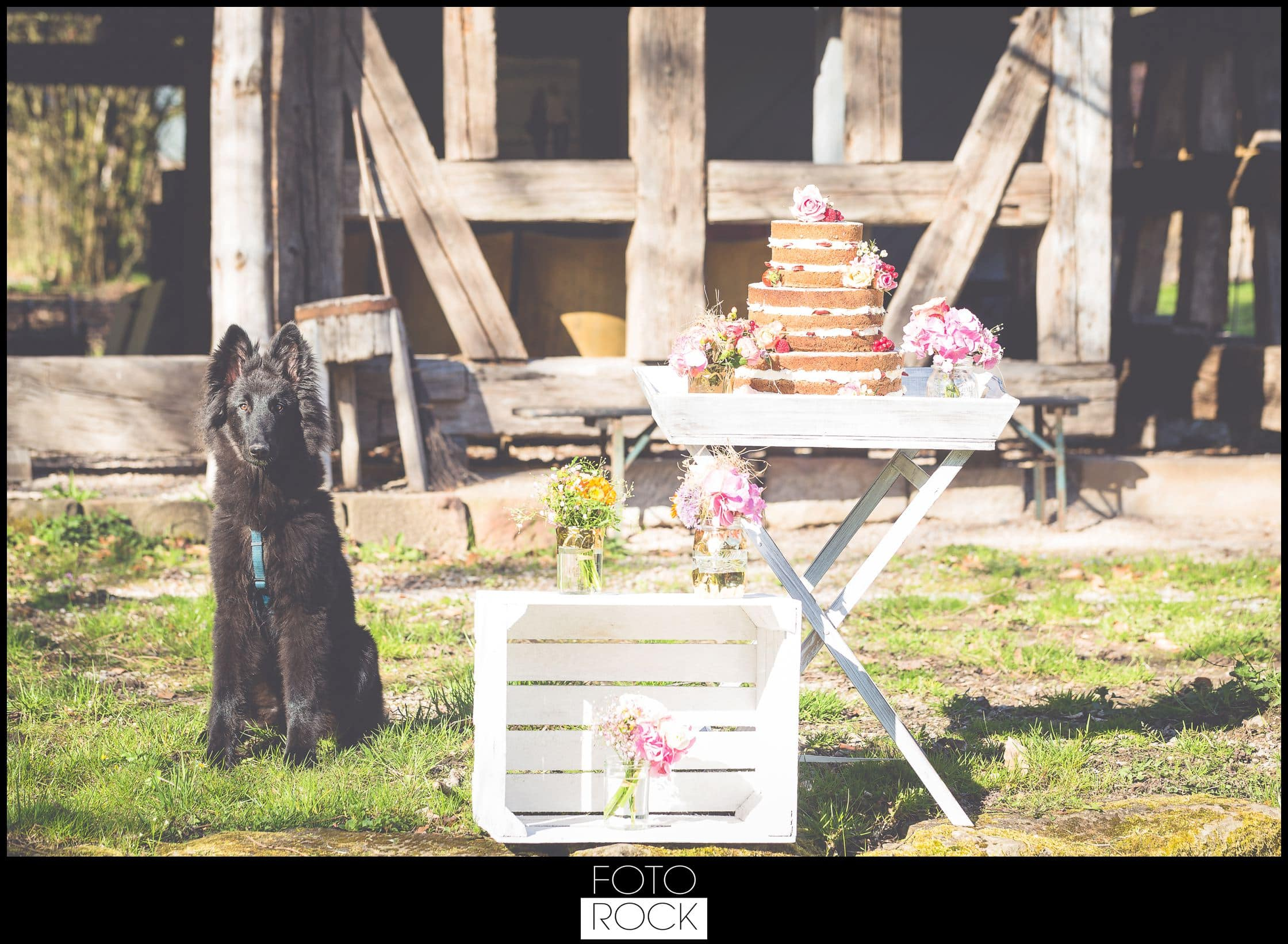 Bohemian Syled Shoot Hochzeit Klausenbauernhof Wolfach Blumen Scheune Outdoor Hund Hochzeitstorte
